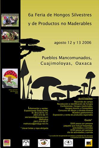 Feria de Hongos Silvestres