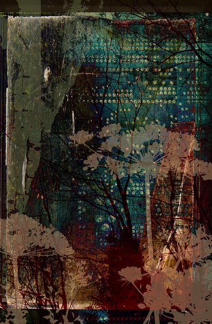 window #15
