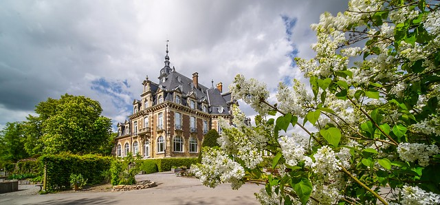 Castle with flowers