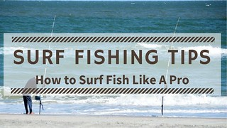 Surf Fishing Tips - How to Surf Fish Like A Pro | by Victor Mays