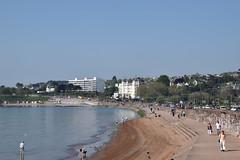 Torre Abbey beach