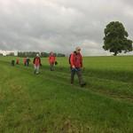 2018_05_16 _Luzernerhinterland_Beat  (126)