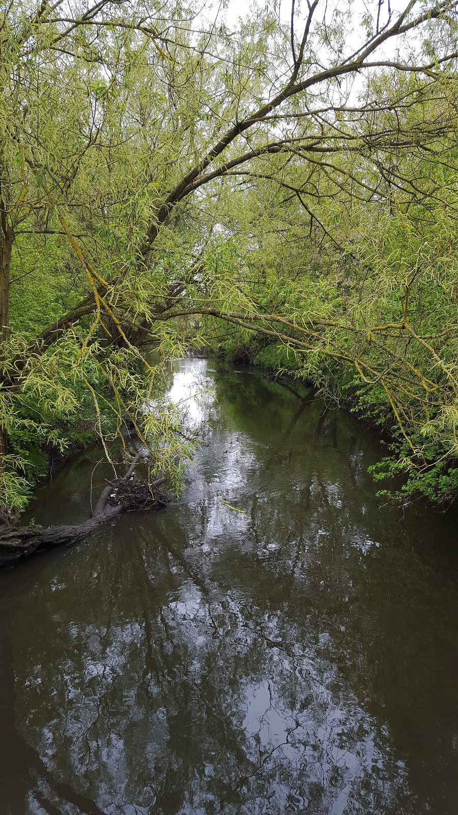 Greenford to Osterley walk